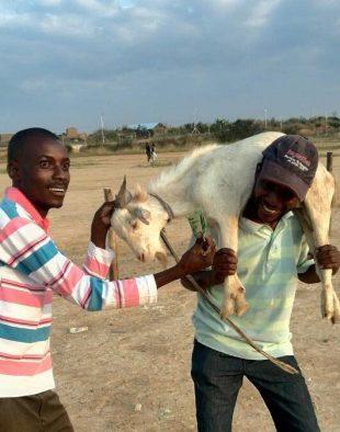 #GoatCurrency Ngoma Yorira Theatre Ensemble Takes It To The Streets