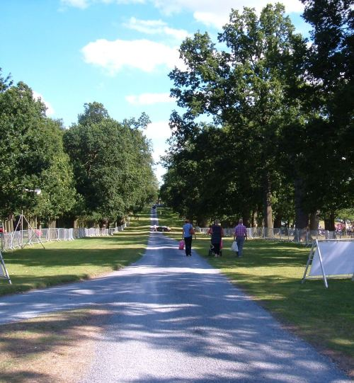 The avenue of oaks planted in 1680 and leading to the Hall