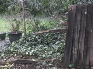 Broken fencing