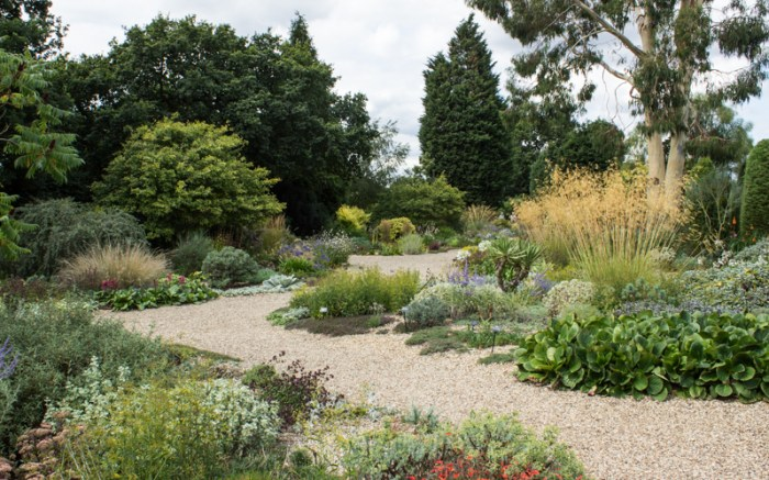 The Dry Garden, Beth Chatto
