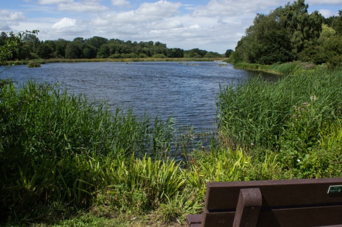 Lakes at Pensthorpe Nature Reserve