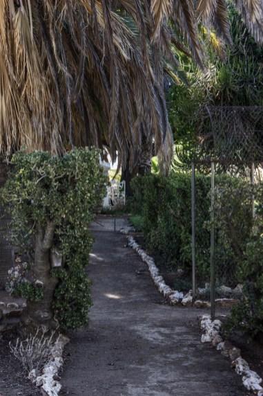 17-2-1-logans-garden-lr-4478