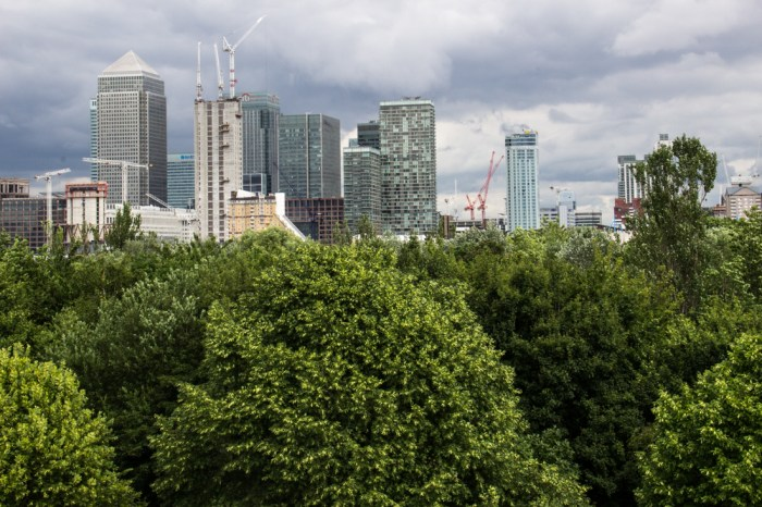 Canary Wharf from Stave Hill