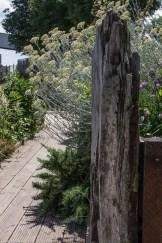 The Sensory Garden at Cody Dock