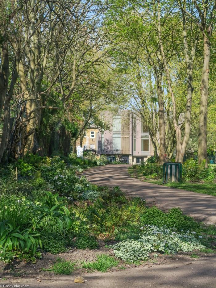 Luxmore Gardens in Lewisham