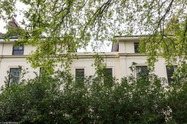 The untidy hedging and new buildings