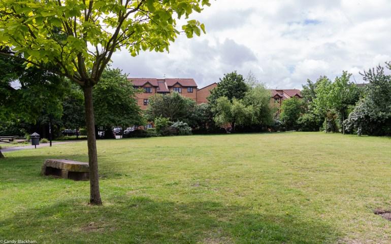 Glenville Grove housing besides the park