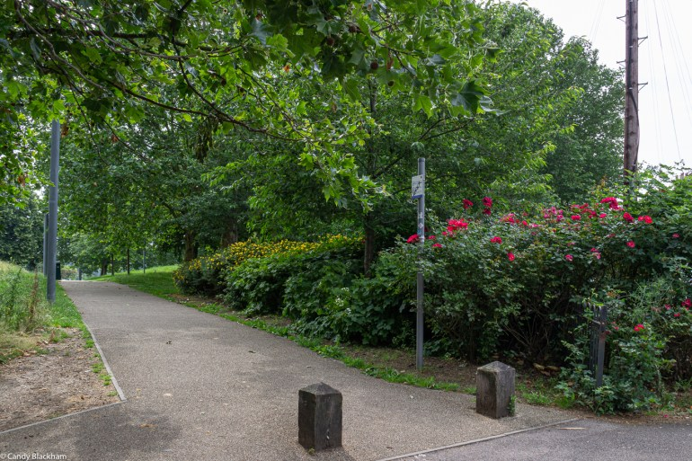 The path into Fordham Park from the corner of Sanford Street and Childeric Road