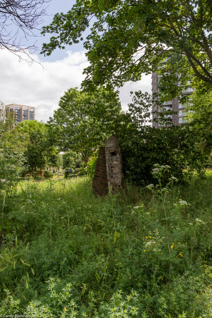 Sue Godfrey Nature Reserve in Lewisham