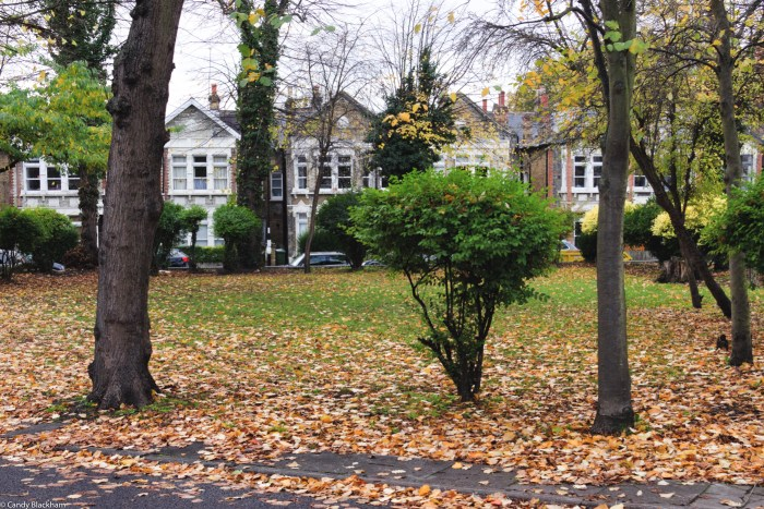 Wickham Gardens in Lewisham