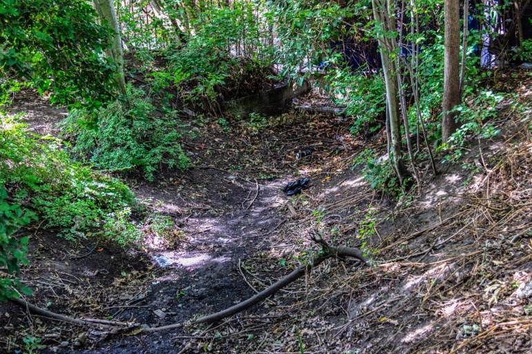 Dry stream bed in Downham Woodland Walk