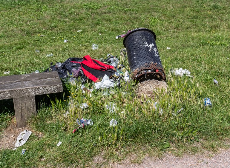 Rubbish in Downham Playing Fields