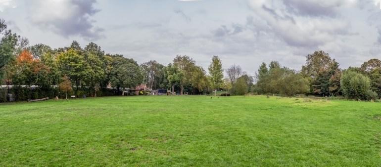 Ladywell Fields in Lewisham