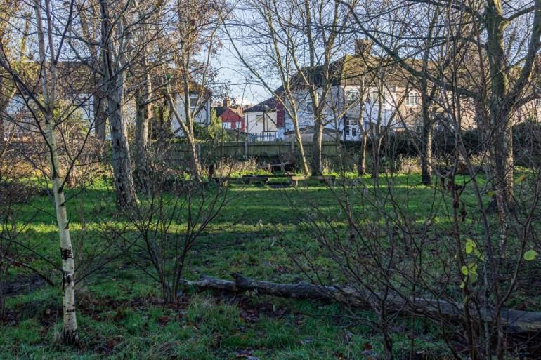 Wildlife area in Northbrook Park in Lee