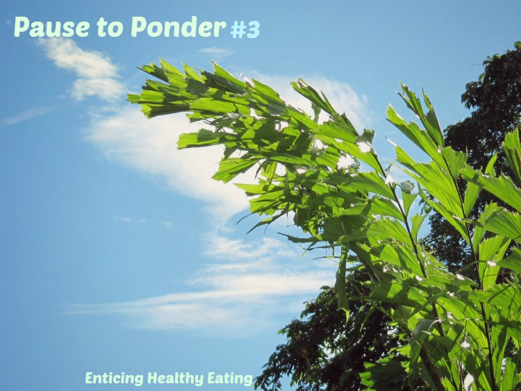 Pause to Ponder #3; Enticing Healthy Eating