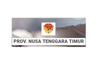 pendaftaran ppdb sma smk kabupaten ngada