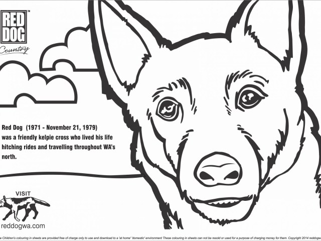 Dog Coloring Pages For Adults Sensational Dog Colouring Images Hot Coloring Pictures Pdf For