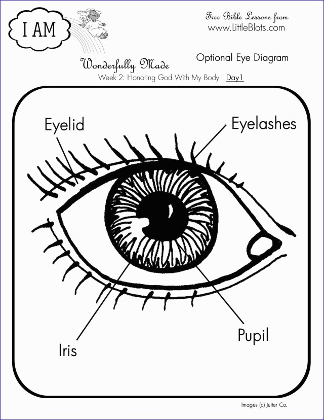 Eye Coloring Page Eye Coloring Book Good Psychedelic Pattern With Eyes Coloring Page