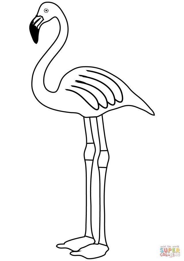 Flamingo Coloring Pages Flamingo Coloring Page Free Printable Coloring Pages
