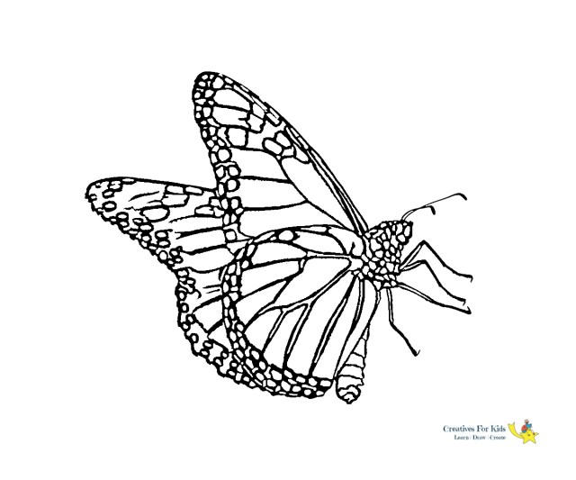 Free Butterfly Coloring Pages Butterfly Coloring Pages Kiddo