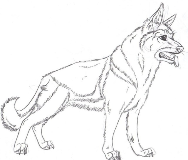 German Shepherd Coloring Pages German Shepherd Coloring Pages Free Cosmo Scope