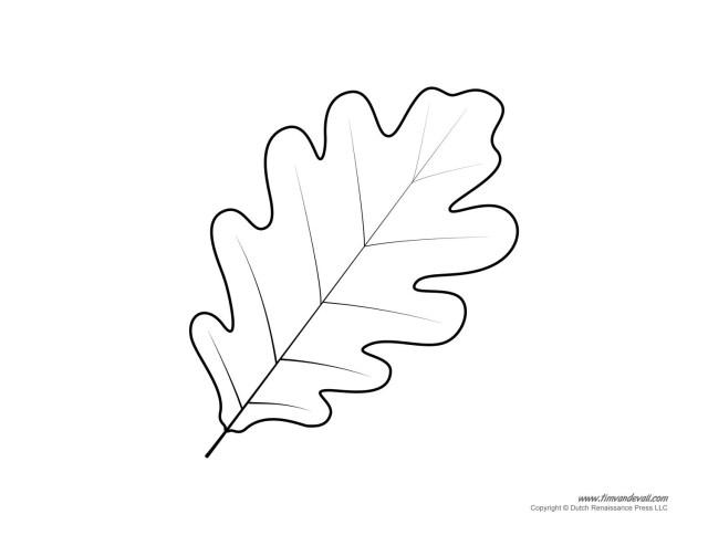 Leaf Coloring Page Brilliant Oak Leaf Coloring Page 74 For With Oak Leaf Coloring Page