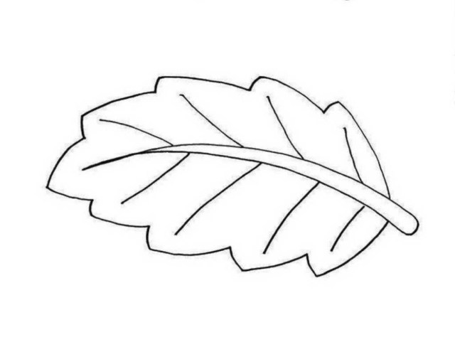 Leaf Coloring Page Leaf Coloring Pages For Preschool Colouring In Cure Leaves Tree Page