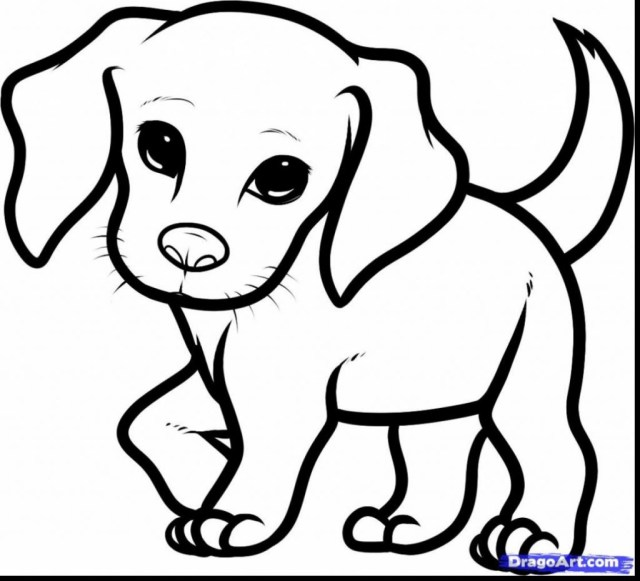 Puppy Coloring Pages Puppy Dog Coloring Pages Pals Fattkay 1024930 Attachment