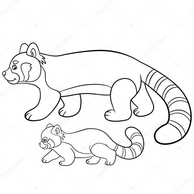 Red Panda Coloring Page Coloring Pages Mother Red Panda Walks With Her Ba Stock Vector