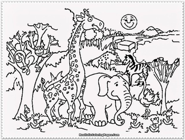 Zoo Animals Coloring Pages Zoo Animals Colouring Pages