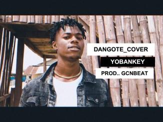 Yobankey - Dangote (Cover)