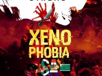 DiReal - Xenophobia SA
