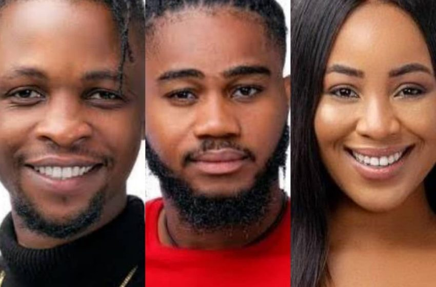 #Bbnaija2020:Erica May Be Acting – Praise Advises Laycon Over Love Triangle