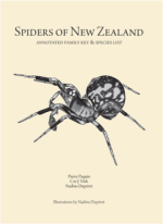 Spiders of New Zealand cover