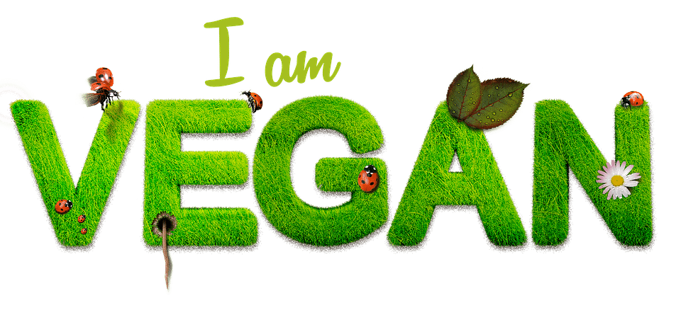 Ala vegan