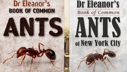 Free Books about Ants for iTunes or as PDF