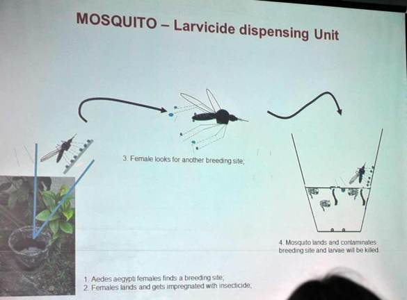 This slide depicts how female mosquitoes can be used to deliver larvicides to standing pools of water, effectively killing the eggs in the water.