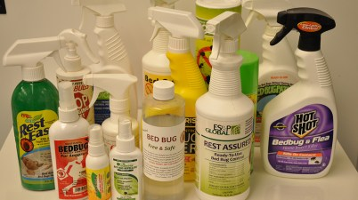 bed bug oils