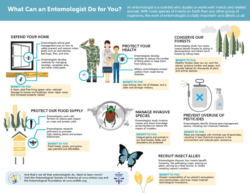 What Can an Entomologist Do For You?