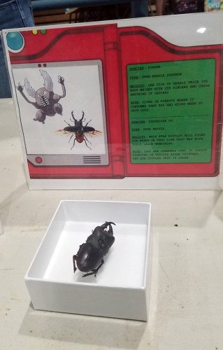 Frost Entomological Museum - Pinser Pokemon Display
