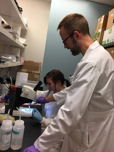 Scott O'Neal - Physiology lab
