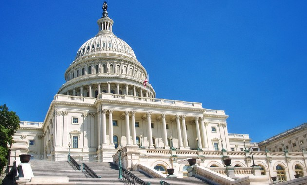 U.S. Capitol steps