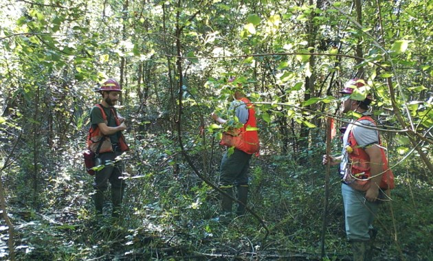 USDA Forest Service Forest Inventory and Analysis crew