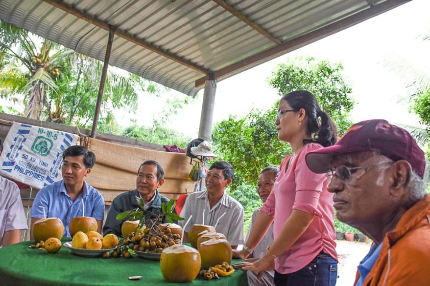 longan farmers in Vietnam