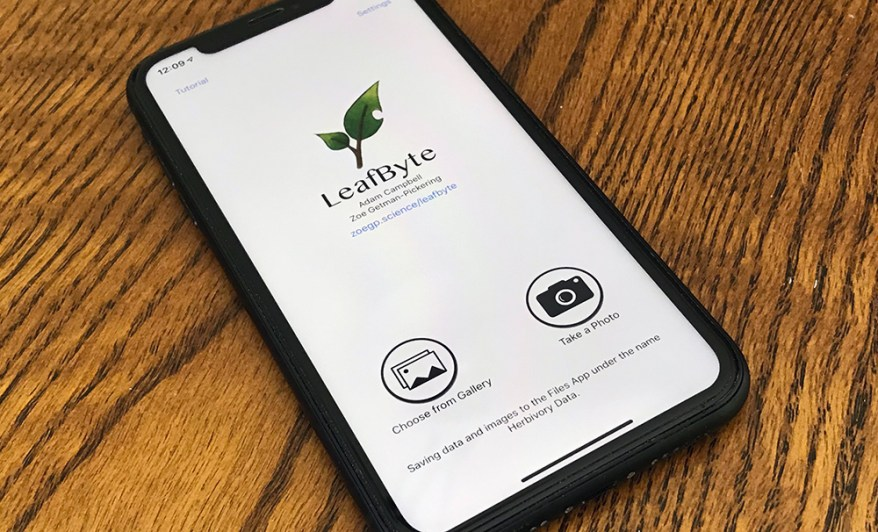 LeafByte on phone