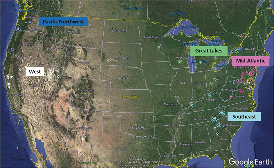 brown marmorated stink bug trap study map