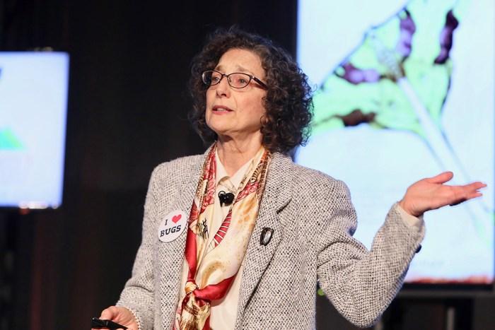 Carol Anelli, Ph.D.