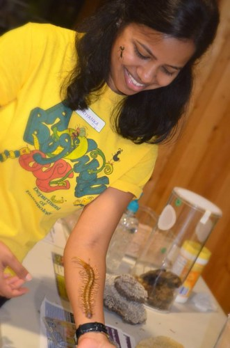 Priyanka Mittapelly, Ph.D.