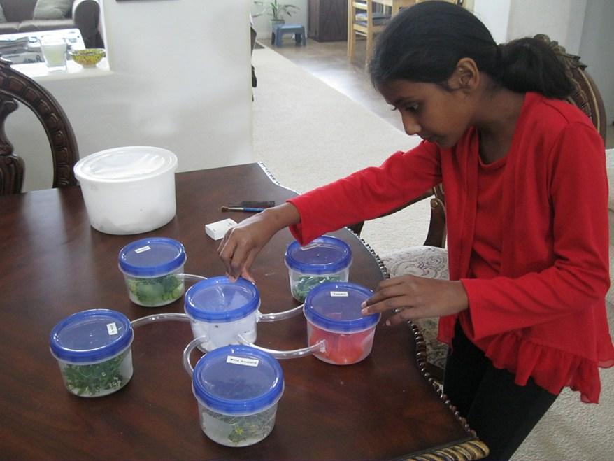 Suchitra Dara