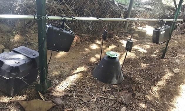 Picusan Cone Trap Camera Array
